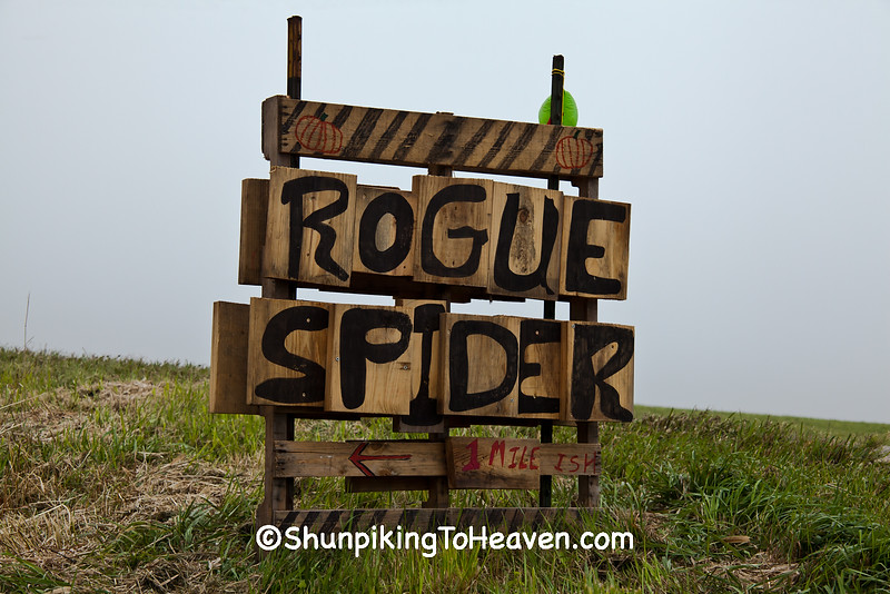 Sign for Rogue Spider, 2015 Farm/Art DTour, Sauk County, Wisconsin