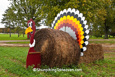 Hay Bale Turkey, Waushara County, Wisconsin