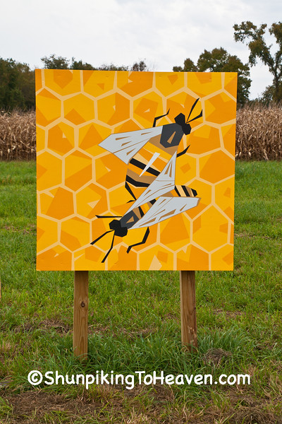 Bees Quilt Square, Sauk County, Wisconsin