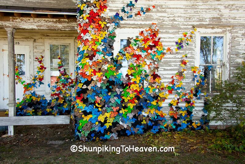 """Invasive Species"", Sauk County, Wisconsin"