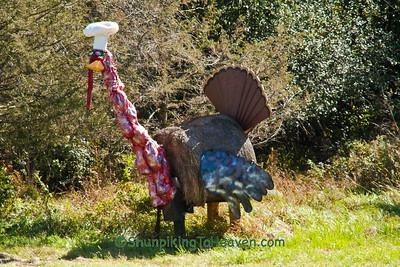 Thanksgiving Humor; Sauk County, Wisconsin