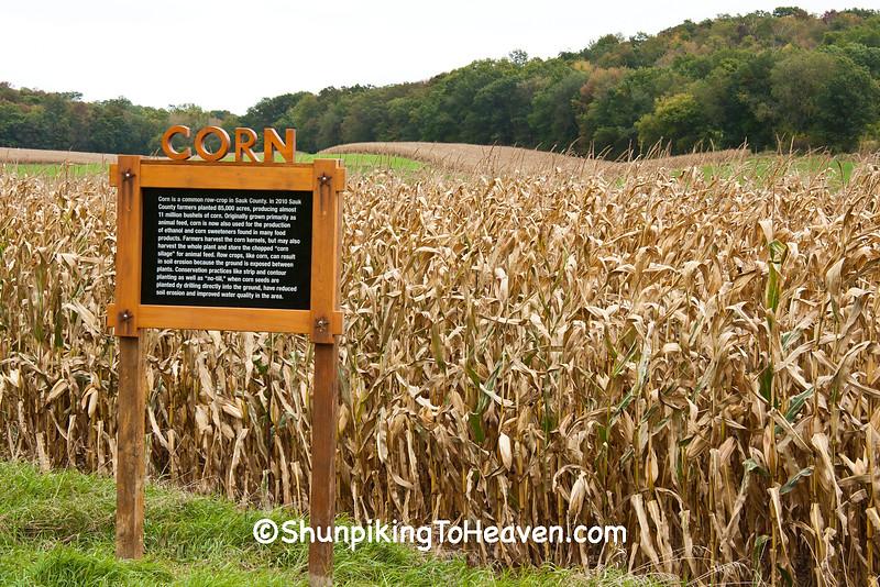 """Field Notes: Corn"", 2015 Farm/Art DTour, Sauk County, Wisconsin"