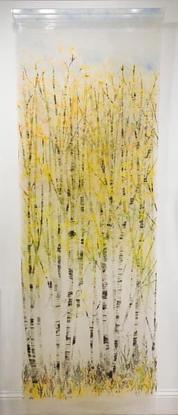 Birch IV, Spring