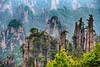 Yangjiajie - Tian Zhi Mountain