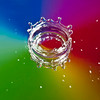 dripmirror032309_MG_6755-1s