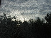 Shattered, Scotland Skies