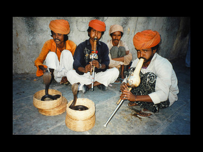 I photographed these snake charmers in India.