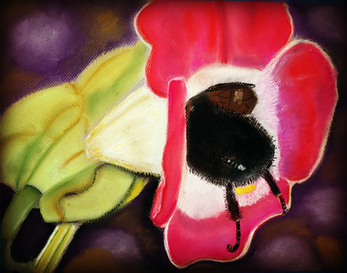 """Bumble Bee Bum"" by Nancy Ann"