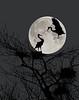 _GR86177_moon_composite