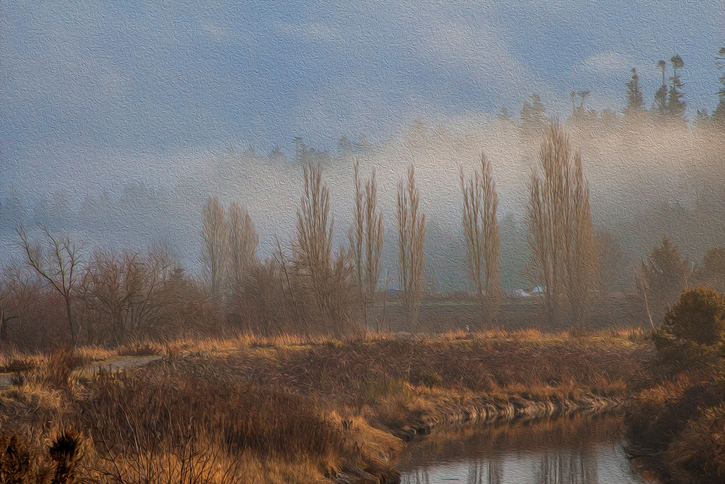 A Winter day in the Fraser Valley, British Columbia