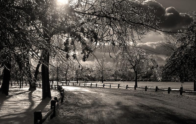 County Park