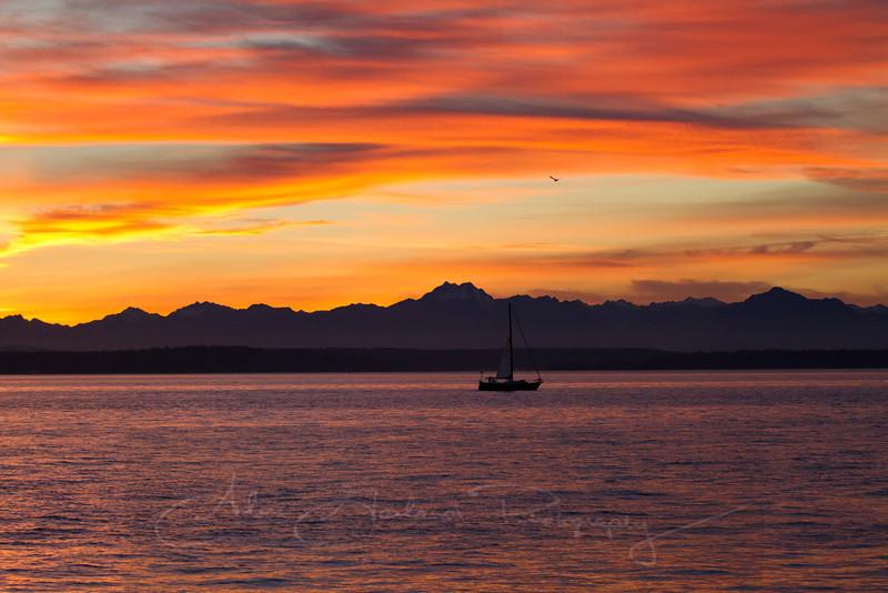 Elliott Bay Sunset