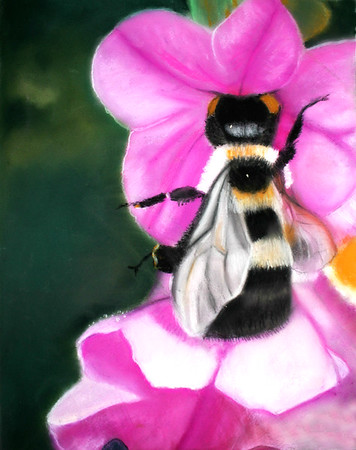 """Nectar So Sweet"" by Nancy Ann Bowe"