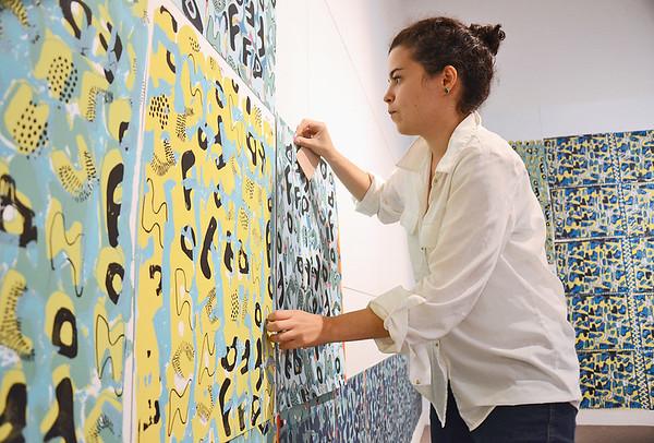 Ingrid de Aguiar Sanchez FAM art installment