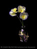 Etain Viola Trio 13x19 copy