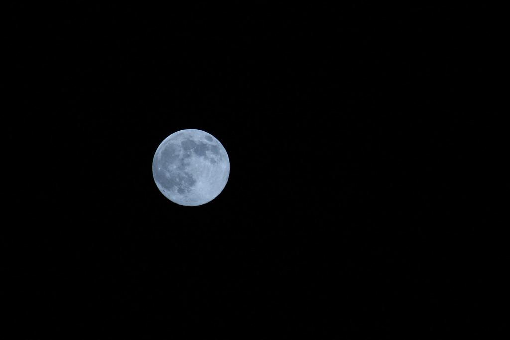 Full moon Spring, TX<br /> Canon 40D, 100-400 L