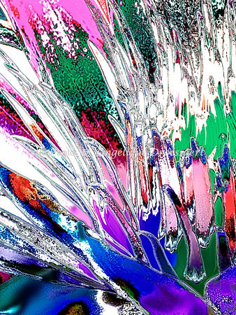 Large<br /> Duke Waterlilies 103 - Version 4