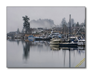 Foggy Gig Harbor Friday