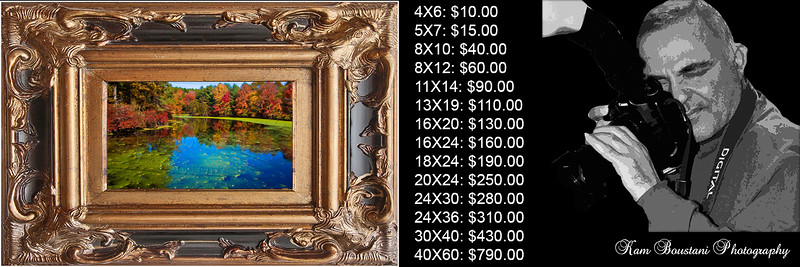 Prices of images