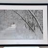 7853 Winter Path framed