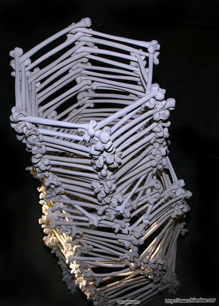 Bones, ceramic, exhibit by Ianna Nova Frisby, Brick House Gallery.