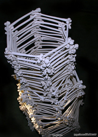 Bones, ceramic, exhibit by Ianna Nova Frisby, Brick House Gallery.