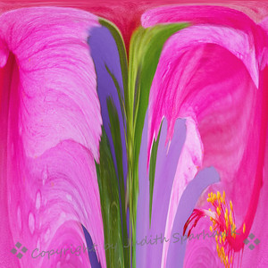 Pink Hibiscus Abstract