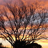 Sunset at Rancho