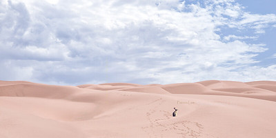 Sand Dune rabbit rev cf 4055-2sRGB