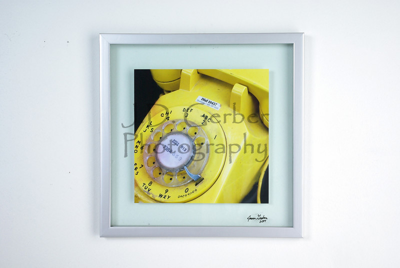 """Lemon Call""<br /> <br /> 10"" X 10"" Color Photograph<br /> 14"" X 14"" Glass Trap Frame"