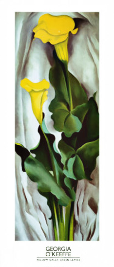Yellow Calla with Green Leaves