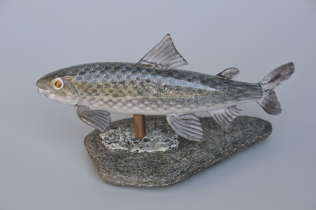 Rocky Mountain Whitefish