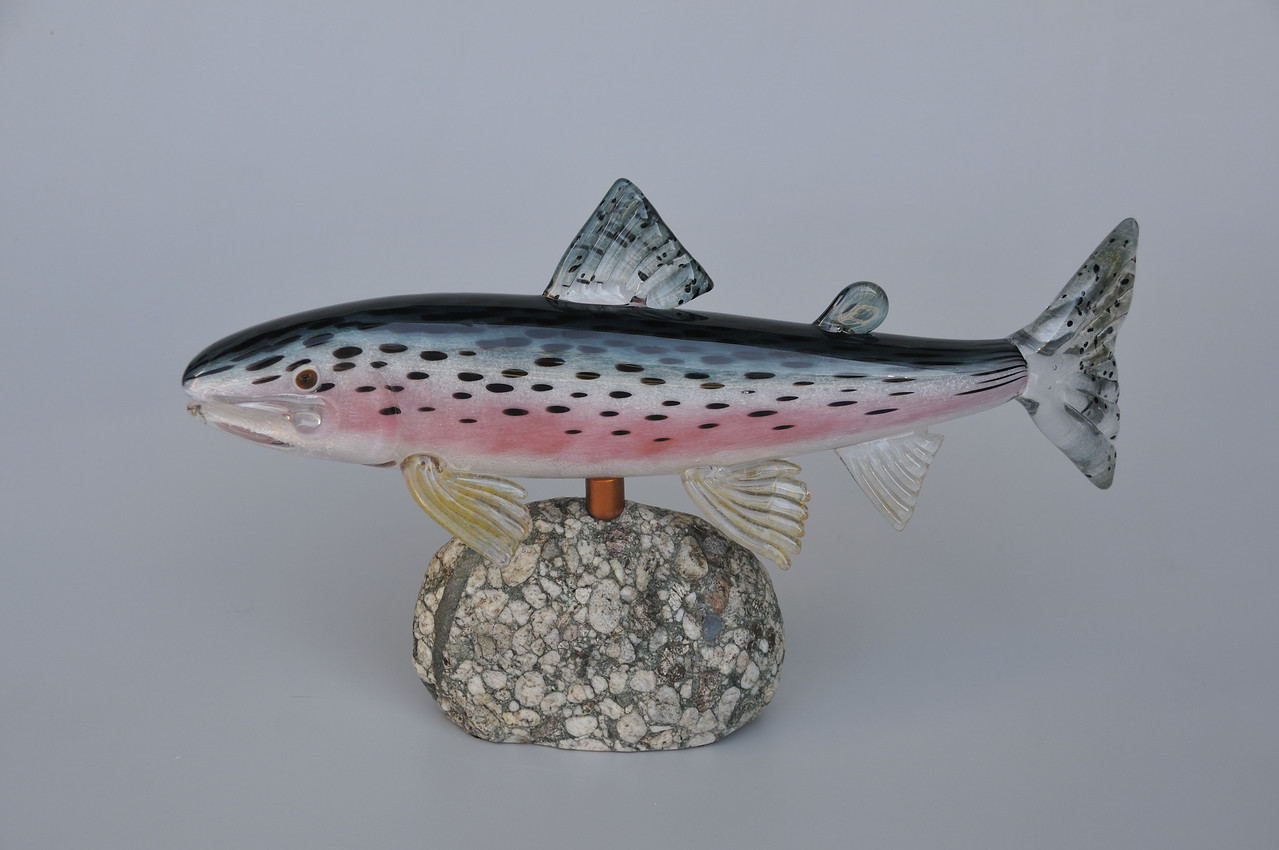Rainbow Trout (darker back)