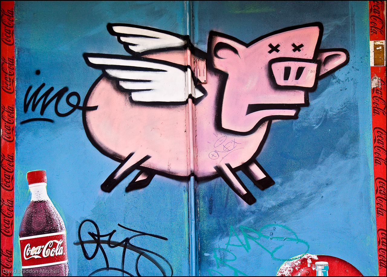 Flying Pig in Enmore