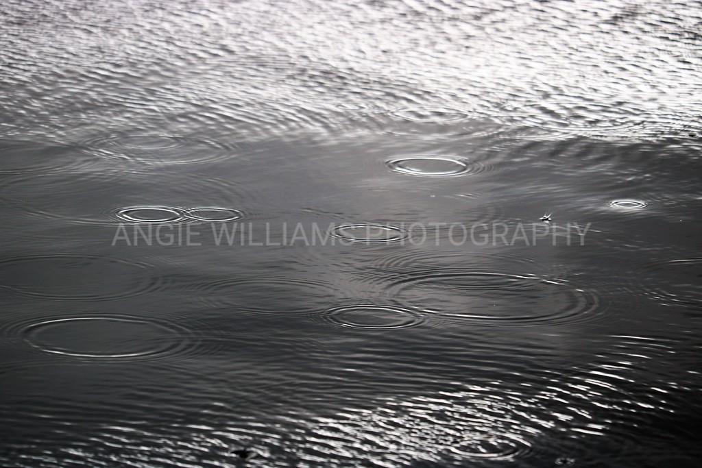 Rain Rings on Water