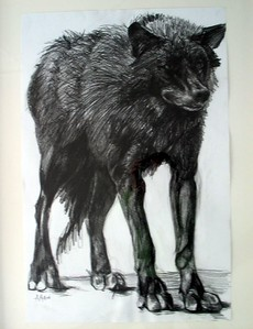 "Ardath Hill, "" Black Wolf  "" ( 2004 ) Mixed media, Retail: $650."
