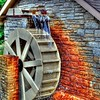 Como Zoo Mill Cottage Grove fine art photographer and photography