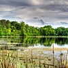 Cottage Grove fine art photographer and photography