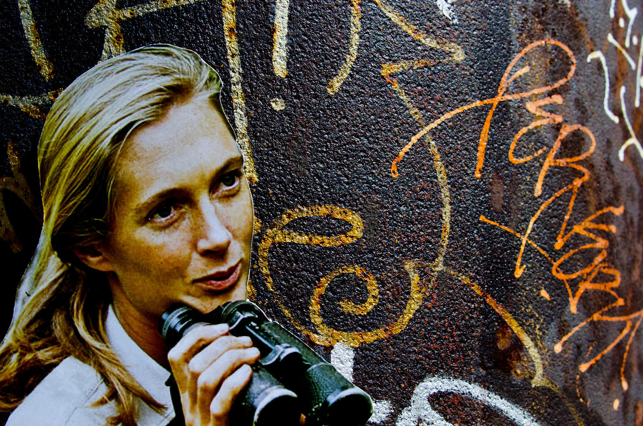 Jane Goodall<br /> <br /> Scott Ramsay<br /> Vancouver<br /> Main Street