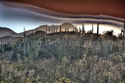 A hiking trail in Tucson Arizona with a strange spooky sky.