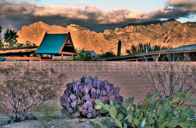 Glowing orange mountains with pink adobe brick wall and colorful prickley pear cactus in foreground in Tucson, Arizona.