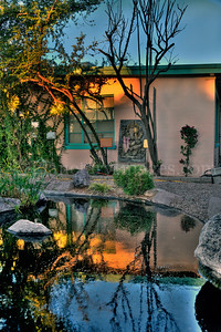 Pond reflection at Govinda's of  Tucson's just before sunset.