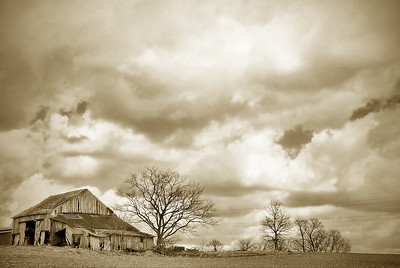 THE OLD BARN WAITS