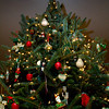 oaa_christmas_party-0530