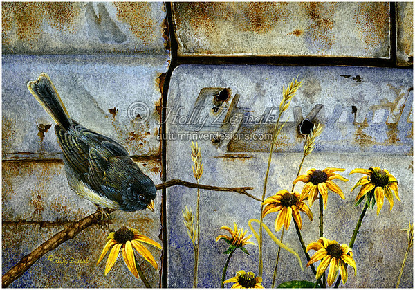 - Junco & Black-Eyed Susans -