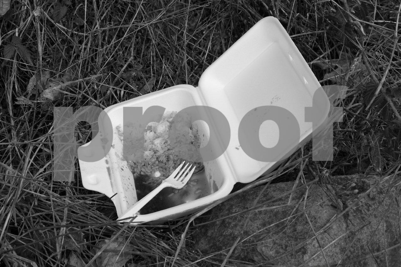 A study in white of the juxtaposition of a fork, rice and carton of take out food...that was left out on the side of the road. Now this is try art.