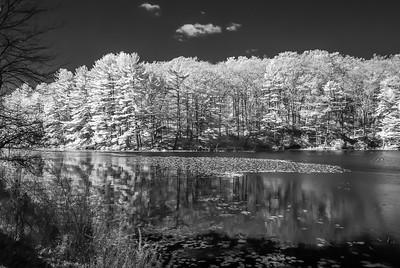 Harriman Pond,  NY