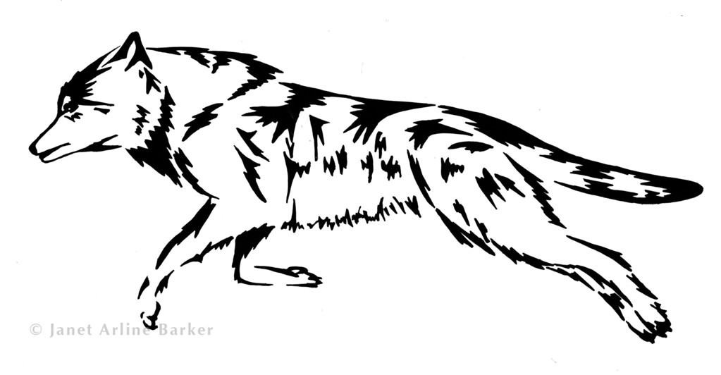 """Timber Wolf: Ink illustration on a mountain bike called the """"Timber Wolf."""""""