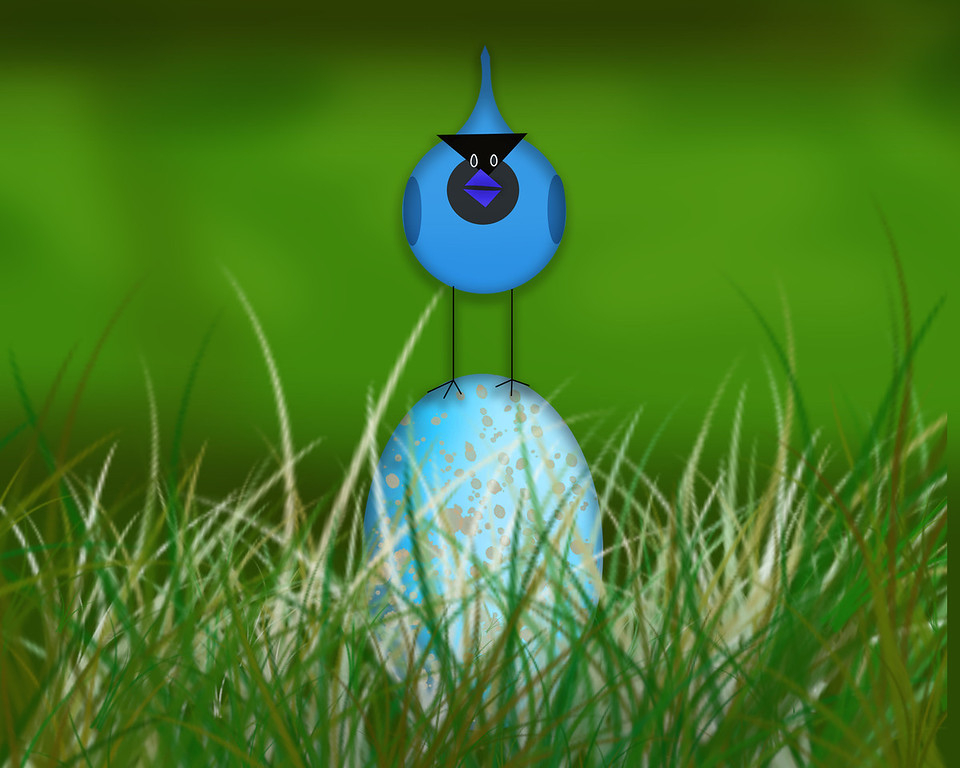 Blue Bird Blue Egg