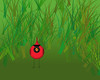 Red Bird in the Grass